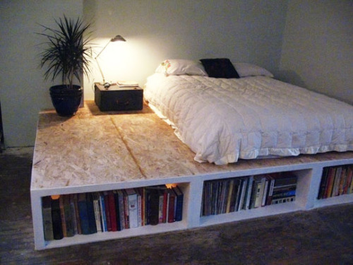Plywood Platform Bed Bookshelf
