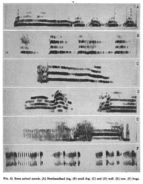 spectogram.jpg?raw=true