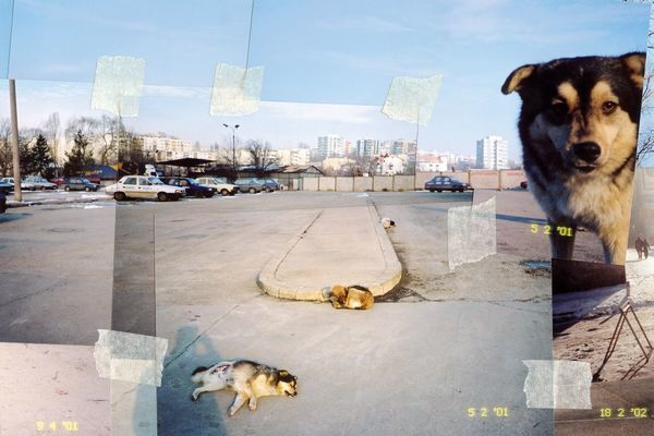 Iosif Király, Reconstructions_Urban Landscapes