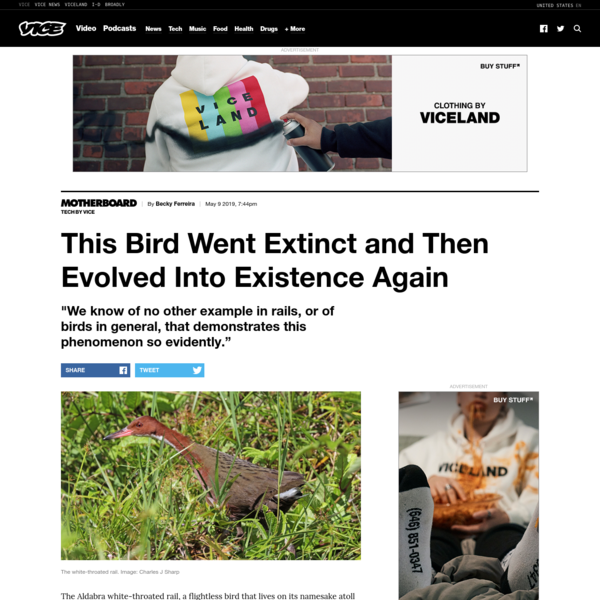 This bird went extinct and then evolved into existence again - VICE