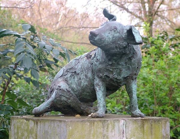 brown-dog-memorial-12.jpg