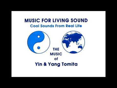 Yann Tomita - Vinyl Beat Of Two Turntables With Cybernetics And Bio Feedback