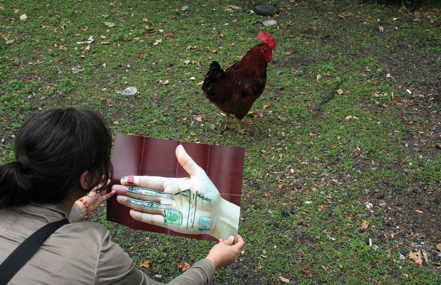 Meta Mapa: Bronx-takeway map (chicken coop), 2008