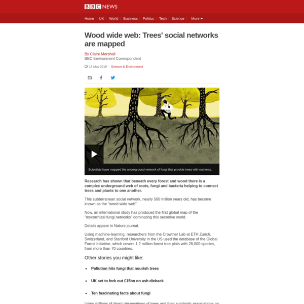 Wood wide web: Trees' social networks are mapped