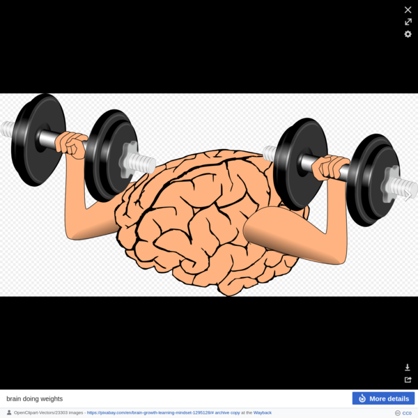 File:Brain-1295128.svg - Wikimedia Commons