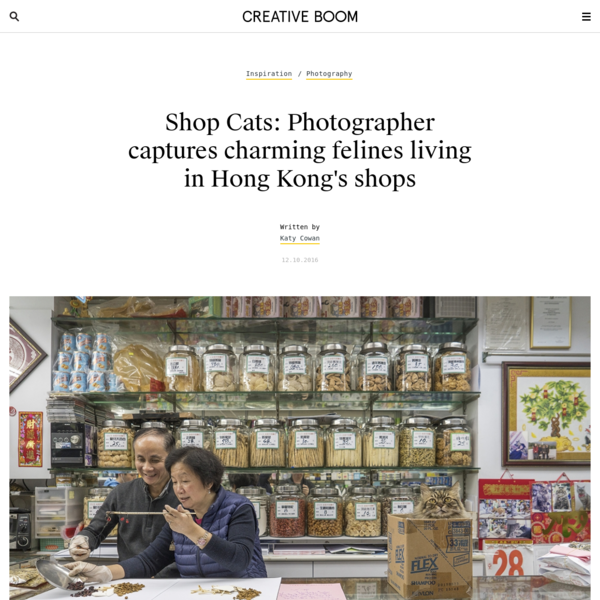Shop Cats: Photographer captures charming felines living in Hong Kong's shops