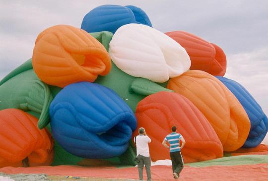 Lady May Pamintuan; Tulip Hot Air Balloon I
