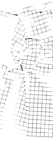 hervethomas.com_nike_grid_test.jpg