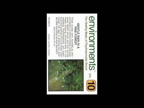 Environments - 10 Gentle Rain in a Pine Forest (Side A)