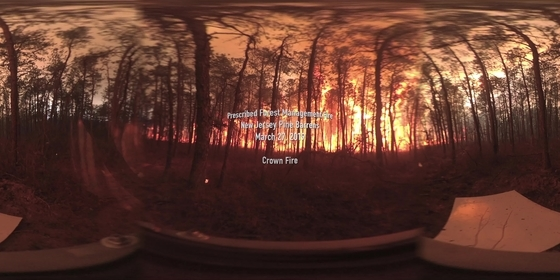 360° Video of Crown Fire during a Prescribed Burn in the New Jersey Pine Barrens on March 27, 2019