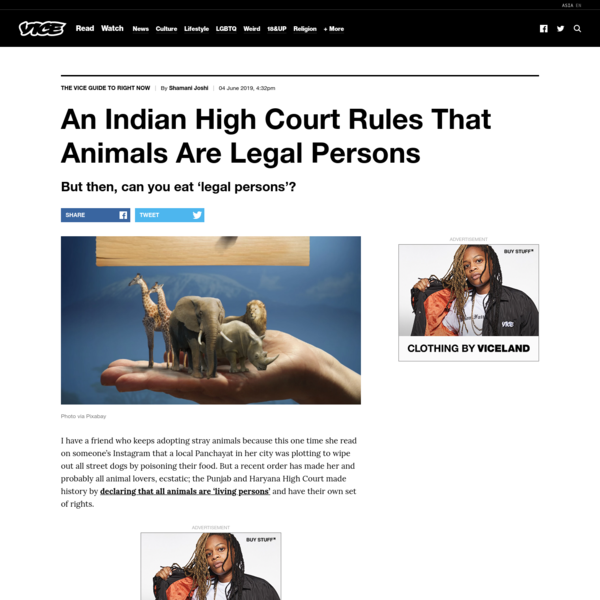 An Indian High Court Rules That Animals Are Legal Persons