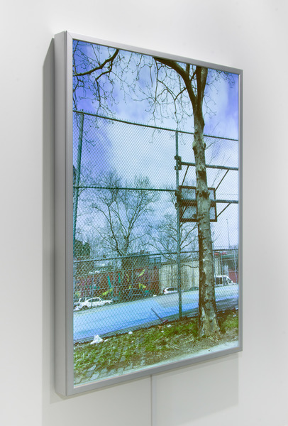 2019.06 Sable Elyse Smith: Art Basel, CH, ScapeG.O.A.T., 2019