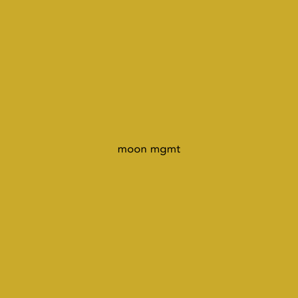 moon mgmt - independent agency representing emerging artists in Copenhagen, London and Paris.