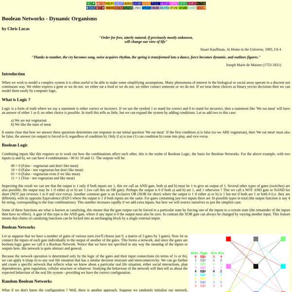 Boolean Networks - Dynamic Organisms