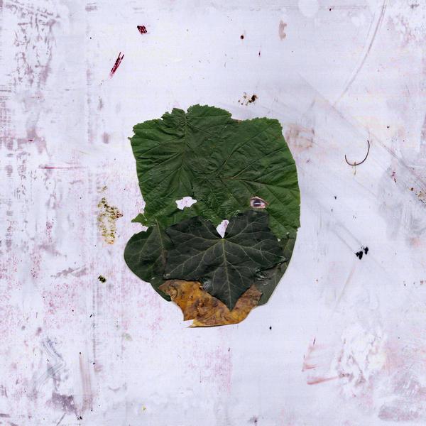 leafman.jpg