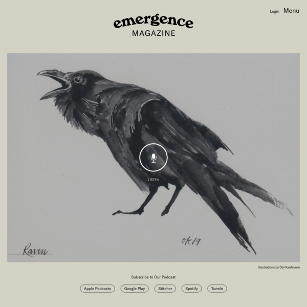The Voices of Birds and the Language of Belonging - Emergence Magazine