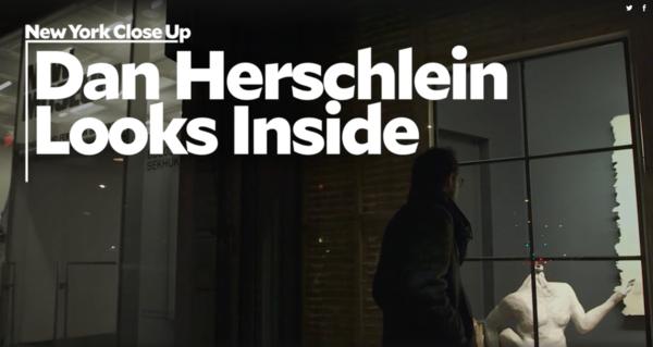 NEWS, Dan Herschlein