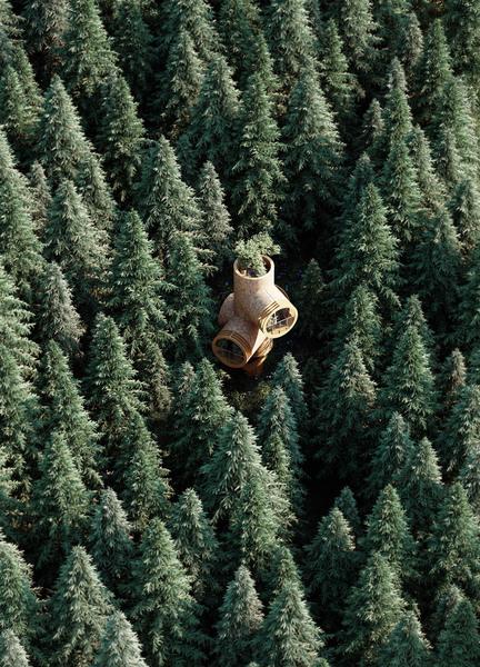 Bert modular treehouse
