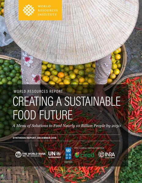 creating-sustainable-food-future_2_5.pdf