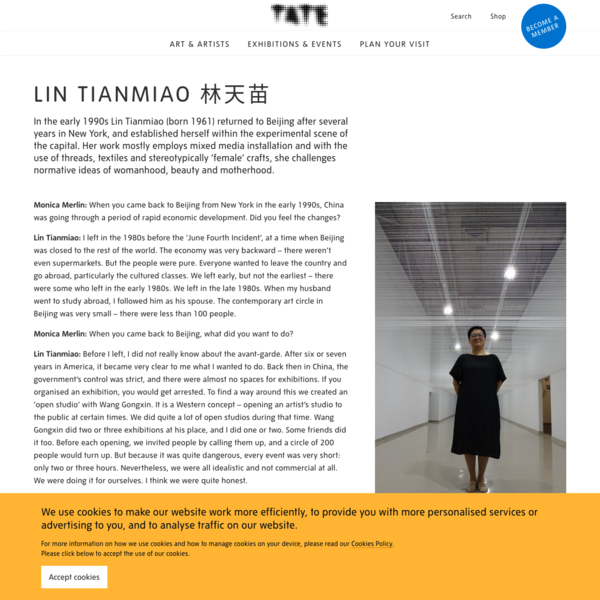 Lin Tianmiao 林天苗   Tate