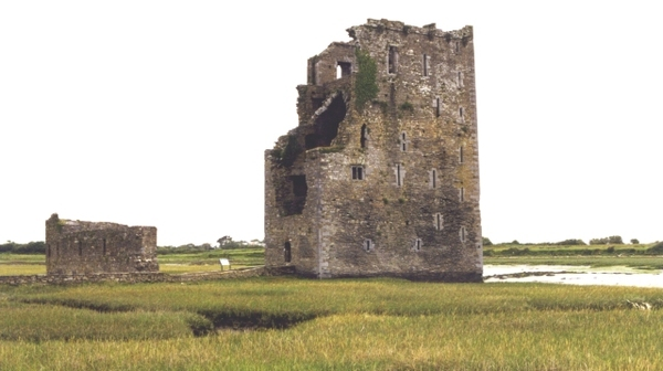 carrigafoyle_castle_-_geograph.org.uk_-_12549.jpg