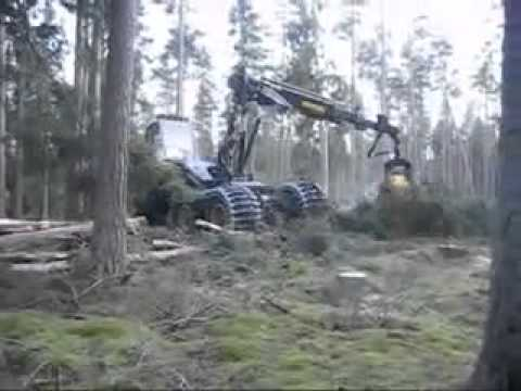 Robotic Efficiency - Tree Cutting