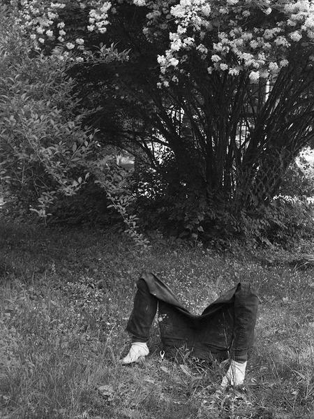 Dan Herschlein, His Familiar, 2015