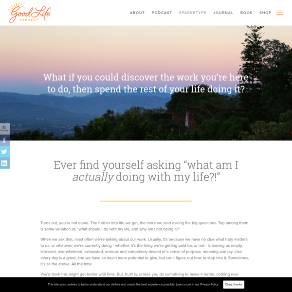 Take the Free Sparketype™ Assessment - Good Life Project