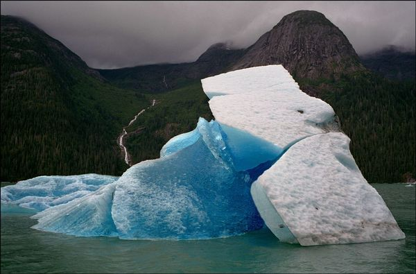 Ian Berry USA. Alaska. Nr Juneau. Tracy Arm Fjord. Large iceberg which has calved off the South Sawyer Glacier.