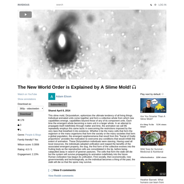 The New World Order is Explained by A Slime Mold!
