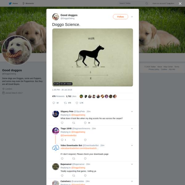 Good doggos on Twitter