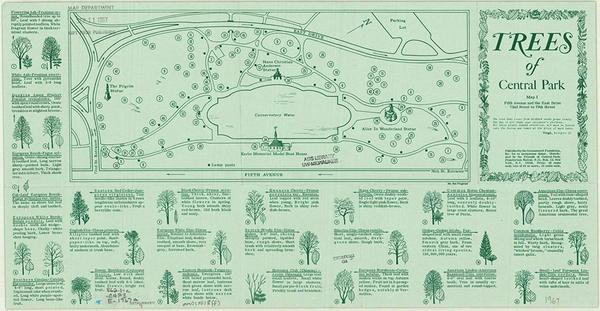 Trees of Central Park (1967)