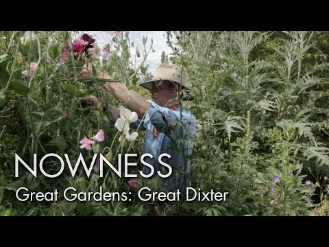 "Great Gardens: ""Great Dixter"" by Howard Sooley"