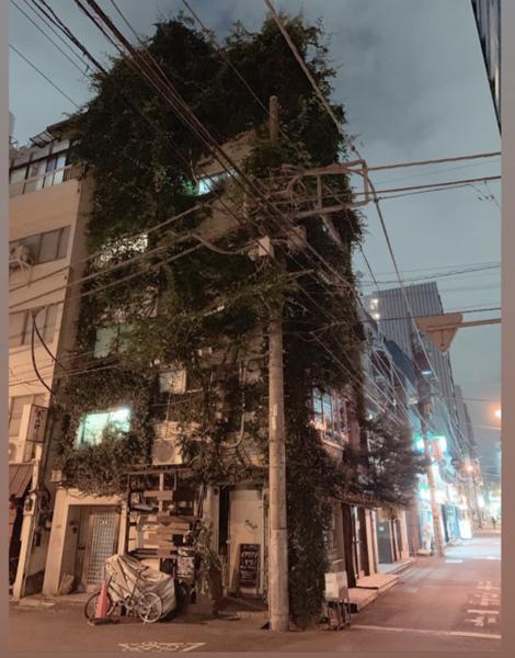 Tokyo-camera-style-japan