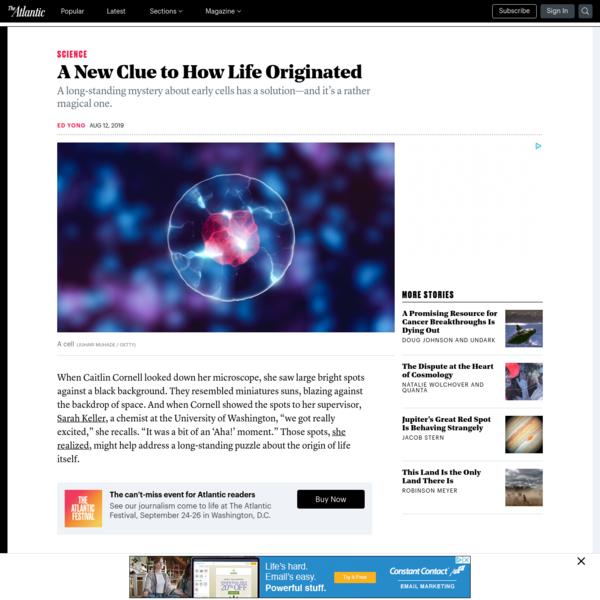 A New Clue to the Origins of Life - The Atlantic