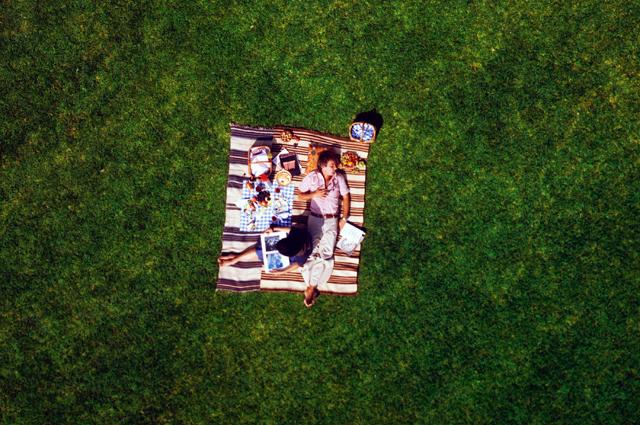 aerial-picnic.jpg