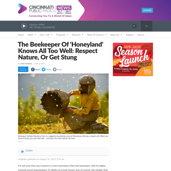 The Beekeeper Of 'Honeyland' Knows All Too Well: Respect Nature, Or Get Stung | WVXU