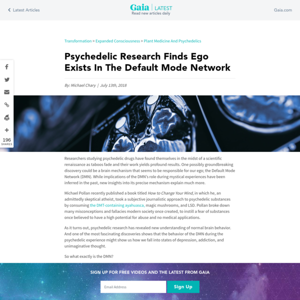 Psychedelic Research Finds Ego Exists in This Part of the Brain