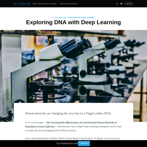 Exploring DNA with Deep Learning