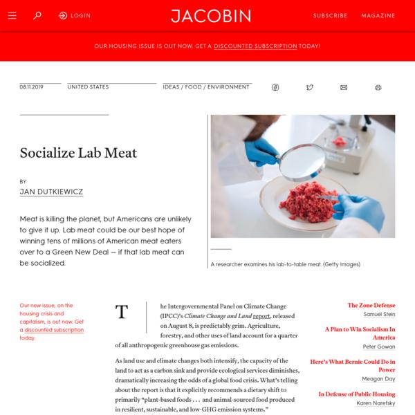 Socialize Lab Meat