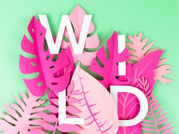 Wild by Tommy Perez