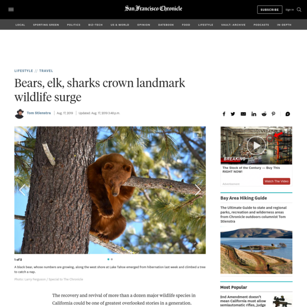 Bears, elk, sharks crown landmark wildlife surge