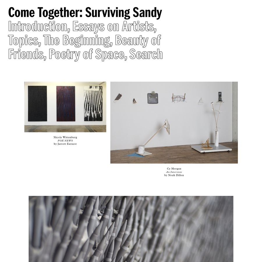 This website serves as a digital component of the exhibition Come Together: Surviving Sandy, Year 1, and was published with the support of the Dedalus Foundation, Industry City, the Jamestown Charitable Trust, the Pollock-Krasner Foundation, and the Helen Frankenthaler Foundation. Both the exhibition and the catalogue were organized by the Brooklyn Rail.