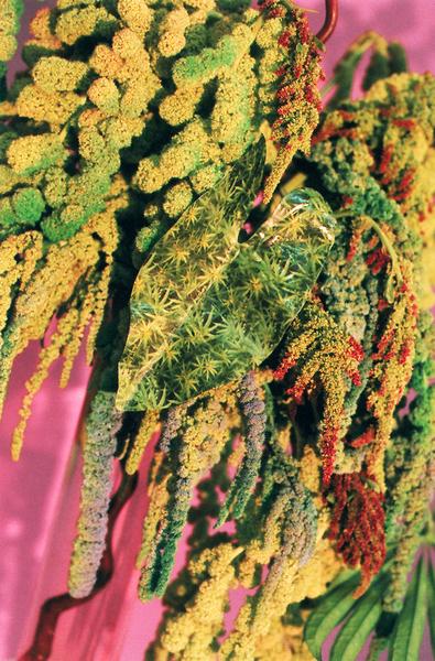 broccoli05_gildedlilies.jpg?format=1000w