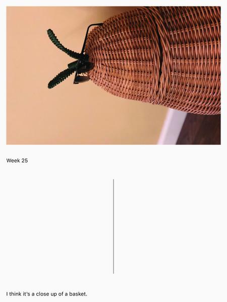 week-25.jpg