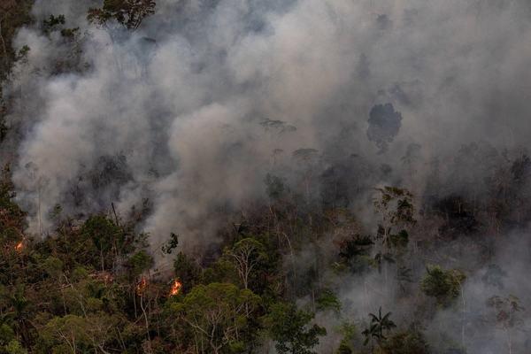 Brazil's Amazon Rainforest on Fire (08/27/19)
