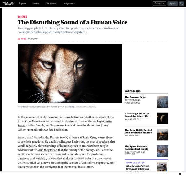 The Disturbing Sound of a Human Voice