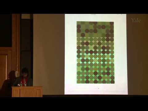 Color in Context: Revisiting Albers, with Anoka Faruqee