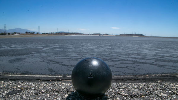 Los Angeles has coated its reservoirs in millions of black plastic balls. But why are they a heat-absorbing black instead of light-reflecting white? Because they're shade balls, and their purpose has nothing to do with the drought.