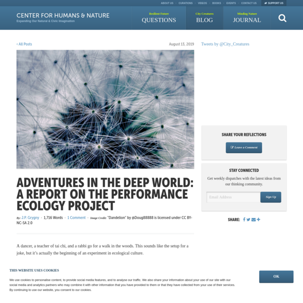 Adventures in the Deep World: A Report on The Performance Ecology Project